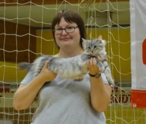 Resultater 2013 • DK Silverleaf • Norsk Skovkatte • Norwegian Forest cats